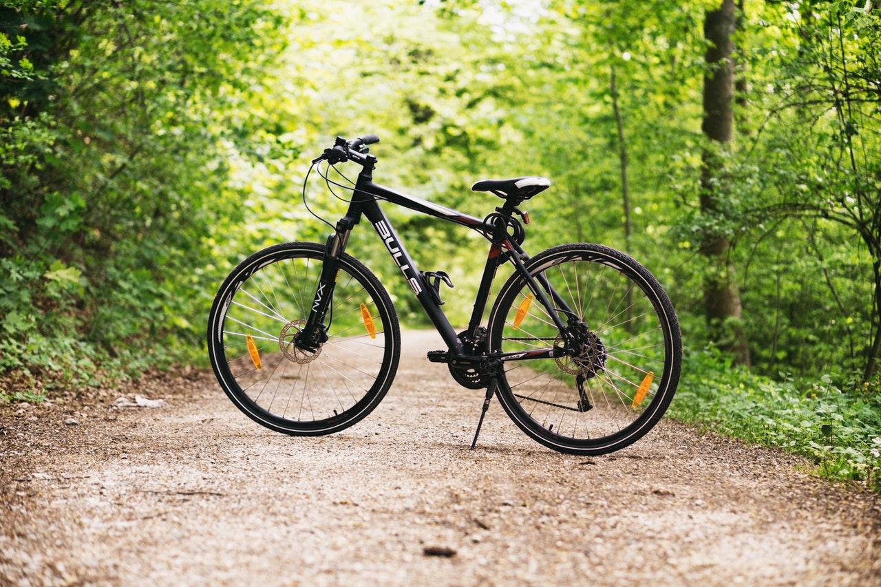 Cykel på skogsväg